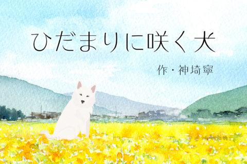 ひだまりに咲く犬