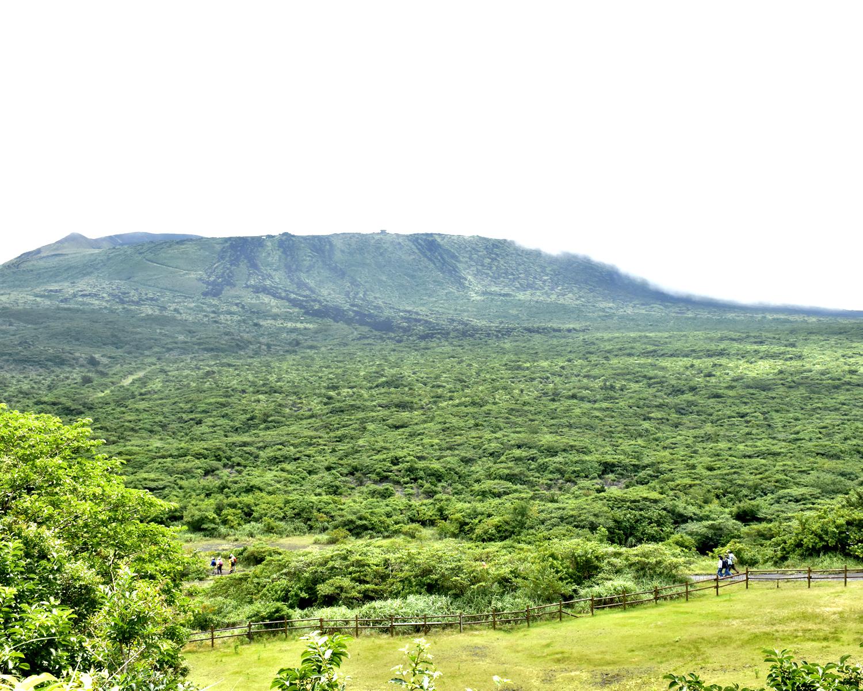 伊豆大島の自然